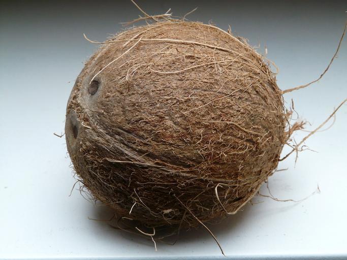celý kokos